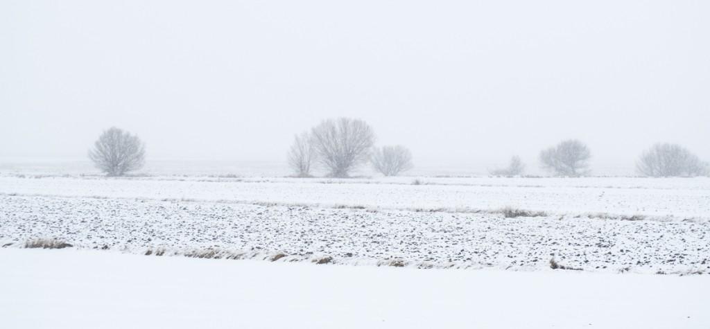 Paisaje minimalista nevado. Blanco y gris.