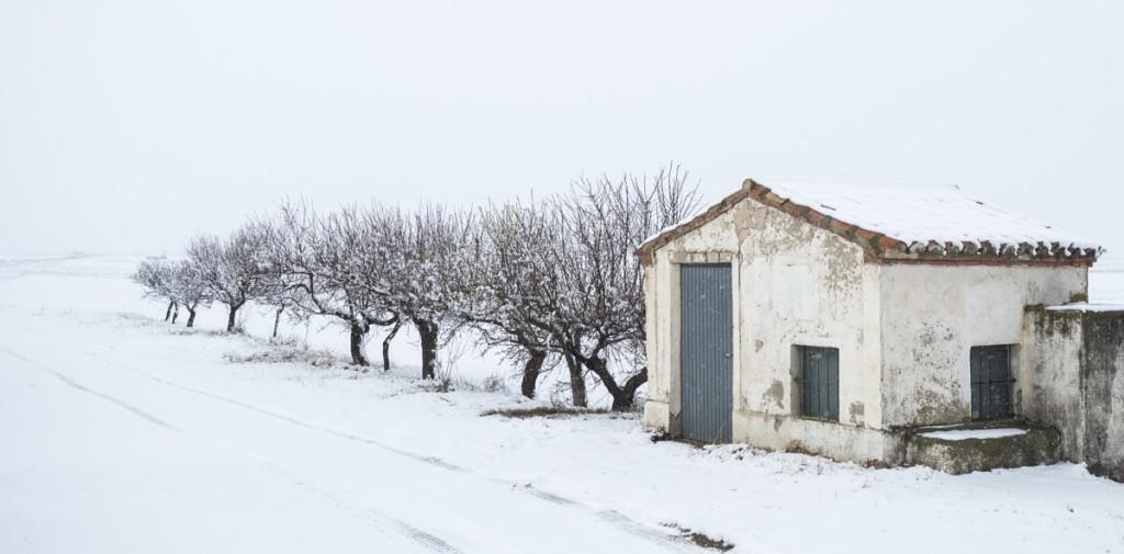 Paisaje con casita y árboles nevados