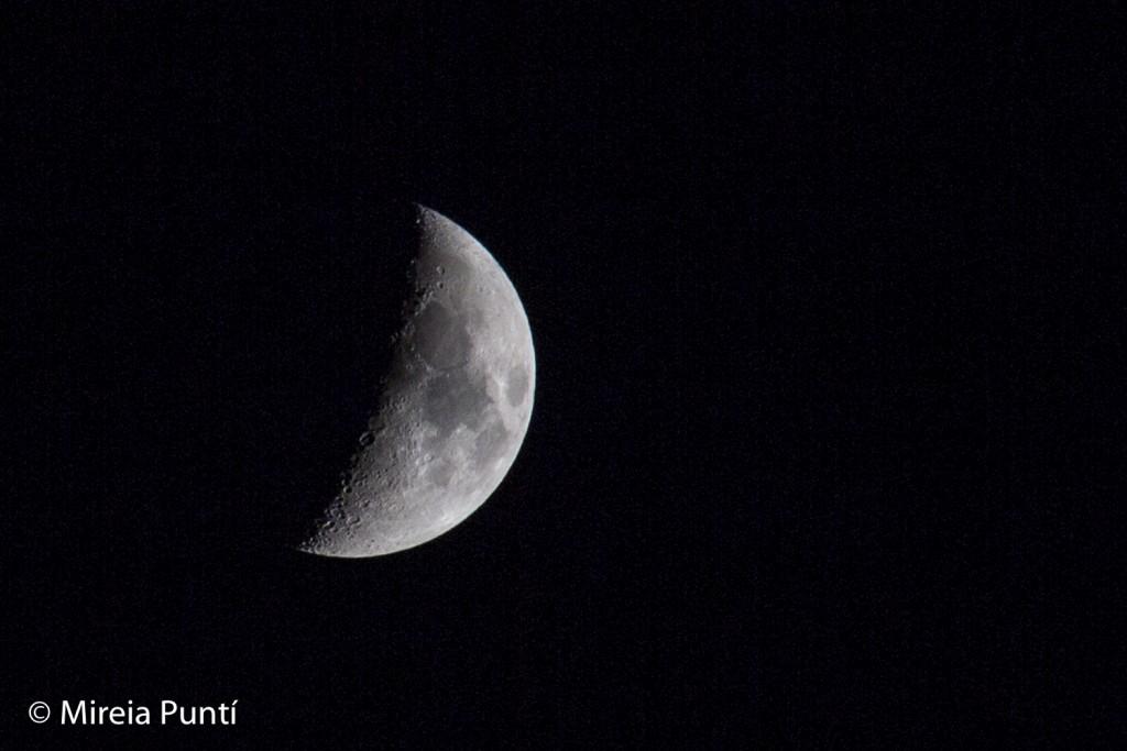 Detalle de luna en cuarto creciente