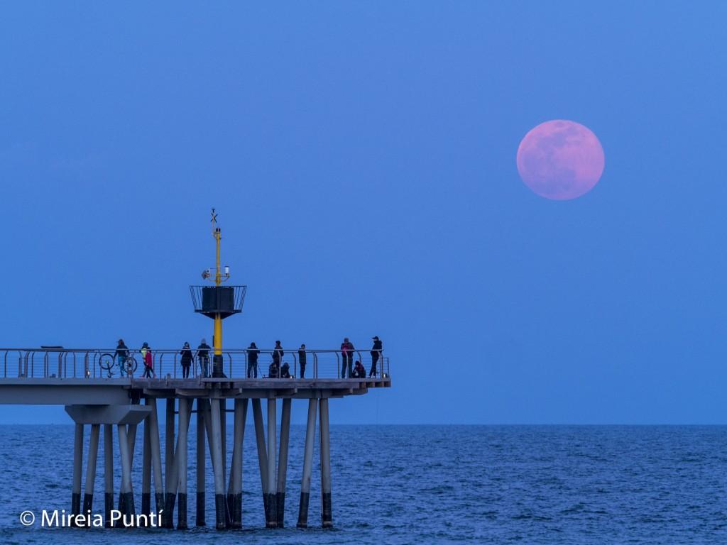 Luna llena sobre el mar en el Pont del Petroli